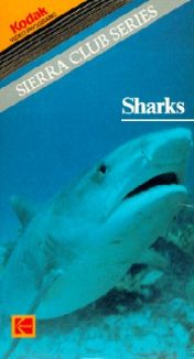 Sierra Club Series: Sharks