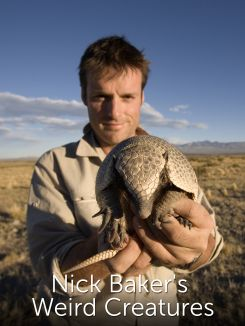 Nick Baker's Weird Creatures