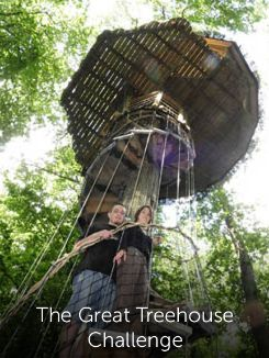 The Great Treehouse Challenge