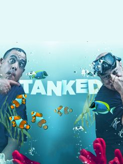 Tanked: Celebrity Scoop