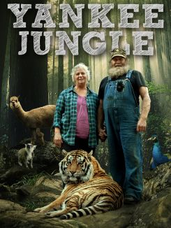 Yankee Jungle: On the Loose