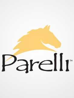 Parelli Natural Horsemanship
