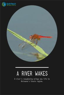 A River Wakes