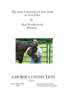 A Horse Connection