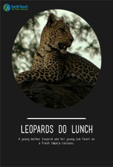Leopards Do Lunch