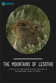 The Mountains of Lesotho