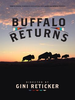 Buffalo Returns
